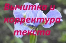 Корректура и вычитка текста 8 - kwork.ru