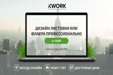 Дизайн флаера/листовки 8 - kwork.ru