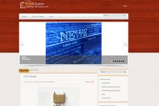 Продам автонаполняемый новостной сайт 21 6 - kwork.ru