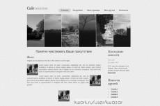 Готовый шаблон сайта для бизнеса по отогреву авто 6 - kwork.ru