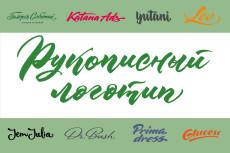 Создам логотип в стиле леттеринг 18 - kwork.ru